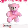 Shinny Teddy Bear